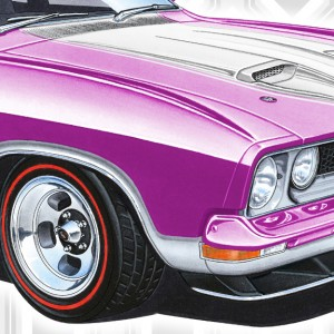 XB Falcon Greeting Cards